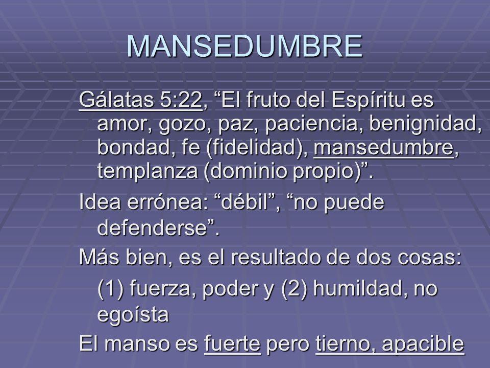 MANSEDUMBRE