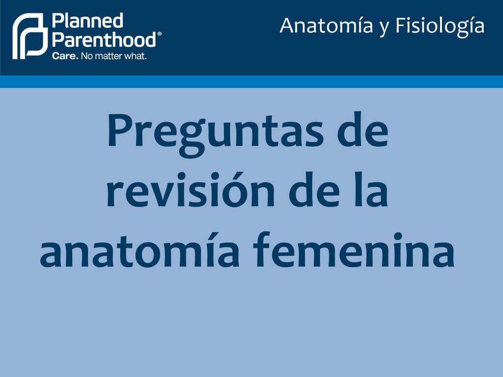 Contemporáneo Anatomía Clep Y Examen De La Fisiología Adorno ...