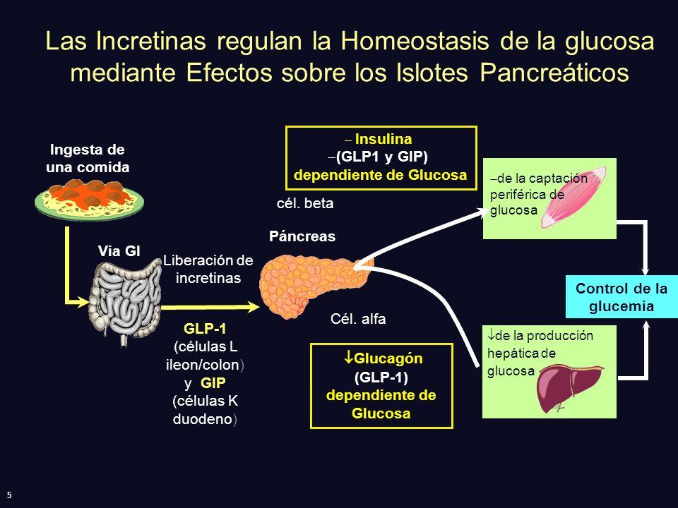 (GLP-1) dependiente de Glucosa dependiente de Glucosa