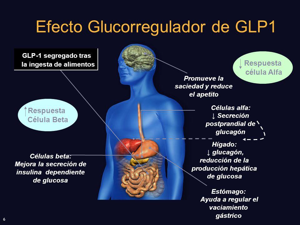 Efecto Glucorregulador de GLP1