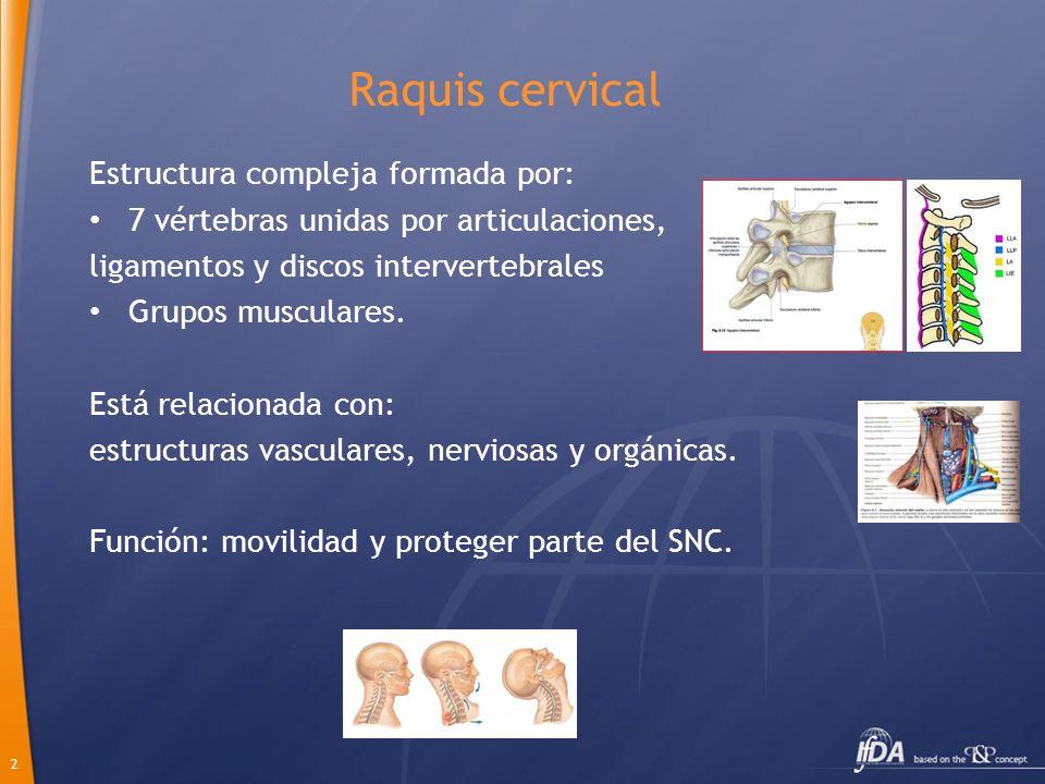 Raquis cervical Estructura compleja formada por: