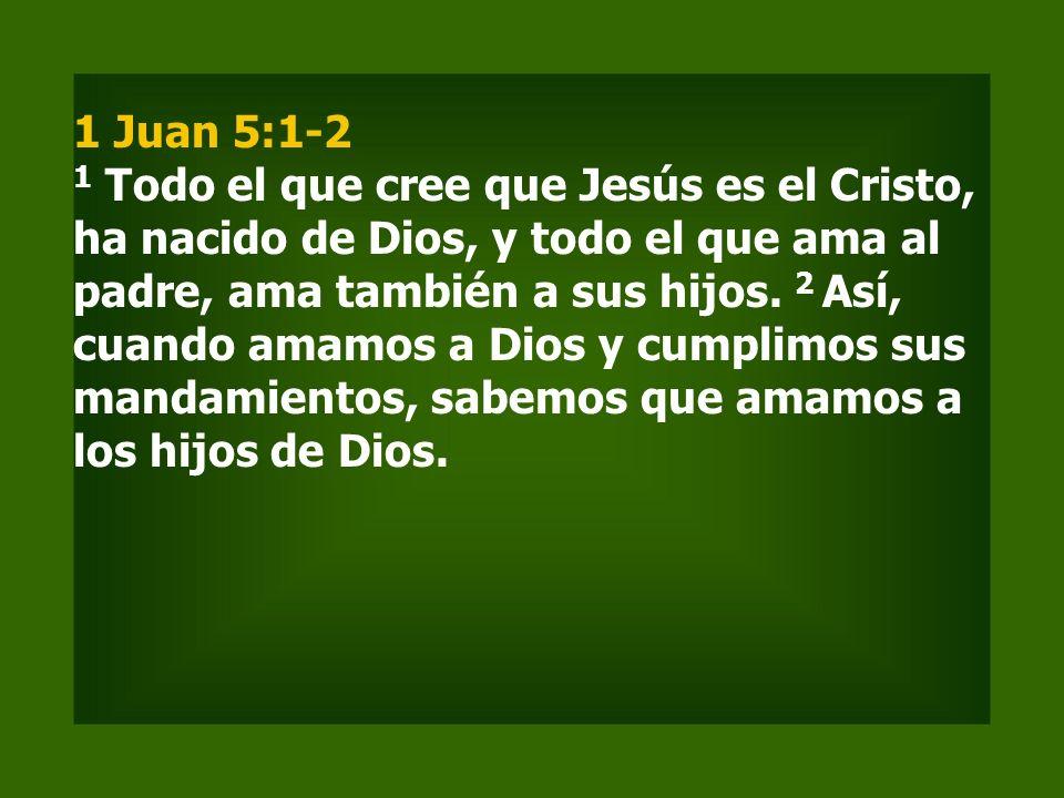 1 Juan 5:1-2 1 Todo el que cree que Jesús es el Cristo, ha nacido de Dios, y todo el que ama al padre, ama también a sus hijos.