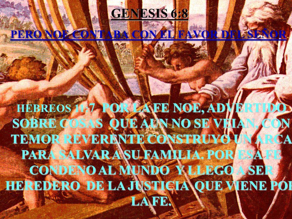 GENESIS 6:8 PERO NOE CONTABA CON EL FAVOR DEL SEÑOR.