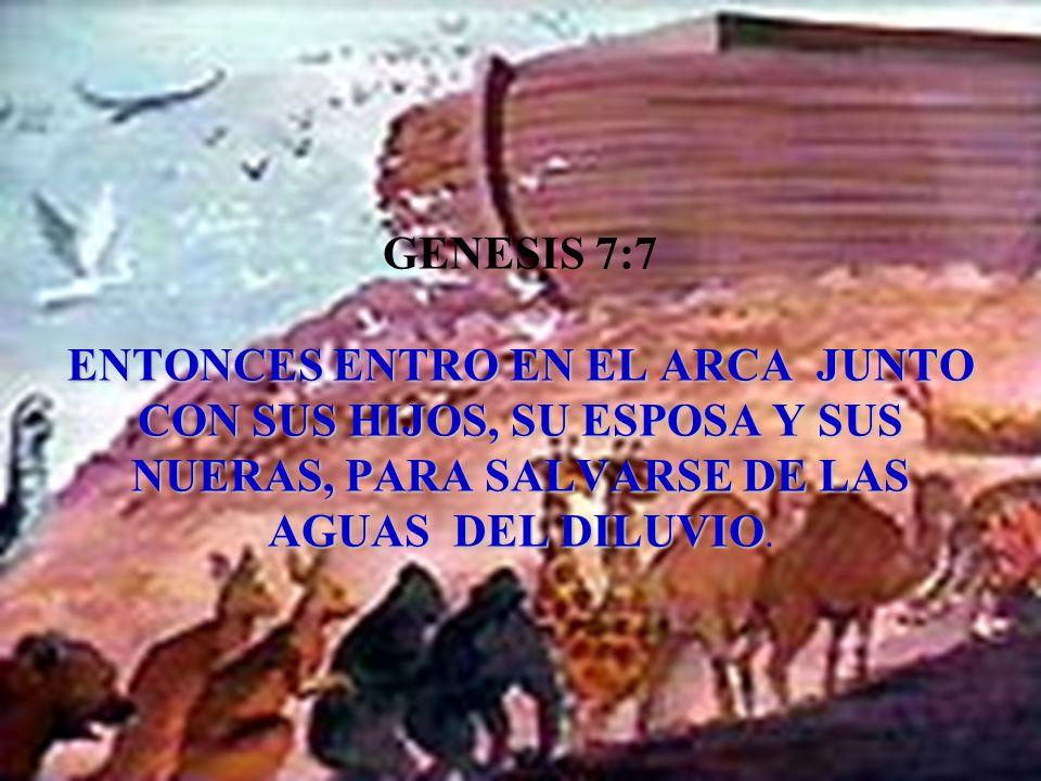 GENESIS 7:7 ENTONCES ENTRO EN EL ARCA JUNTO CON SUS HIJOS, SU ESPOSA Y SUS NUERAS, PARA SALVARSE DE LAS AGUAS DEL DILUVIO.
