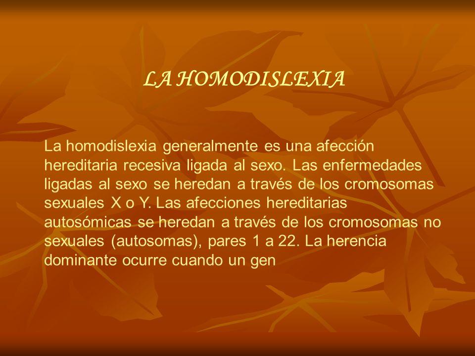 LA HOMODISLEXIA