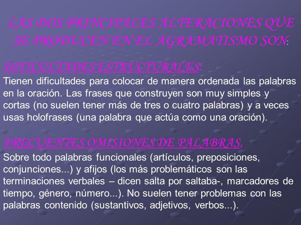 LAS DOS PRINCIPALES ALTERACIONES QUE SE PRODUCEN EN EL AGRAMATISMO SON: