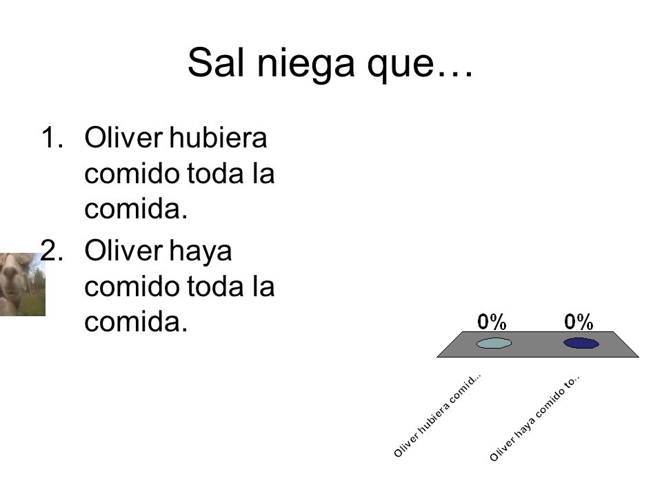 Sal niega que… Oliver hubiera comido toda la comida.