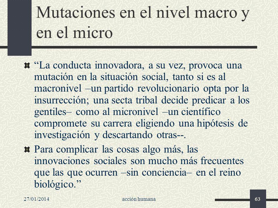 Mutaciones en el nivel macro y en el micro