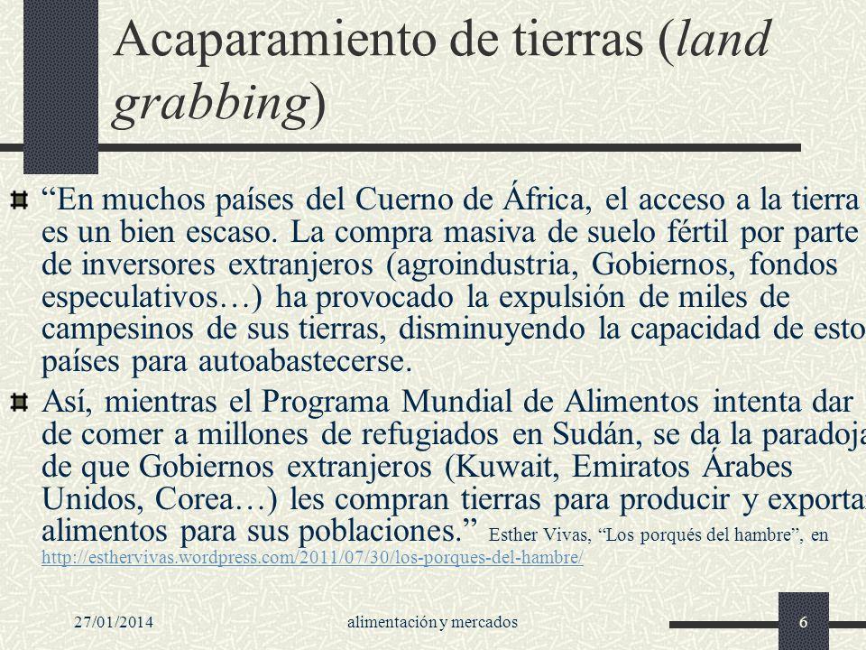 Acaparamiento de tierras (land grabbing)