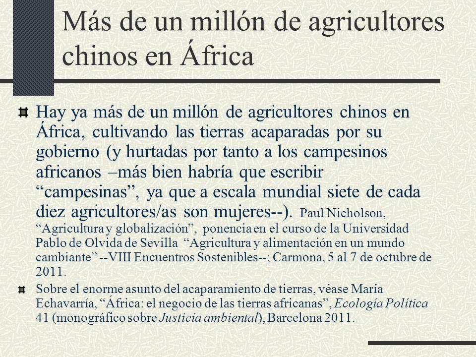 Más de un millón de agricultores chinos en África