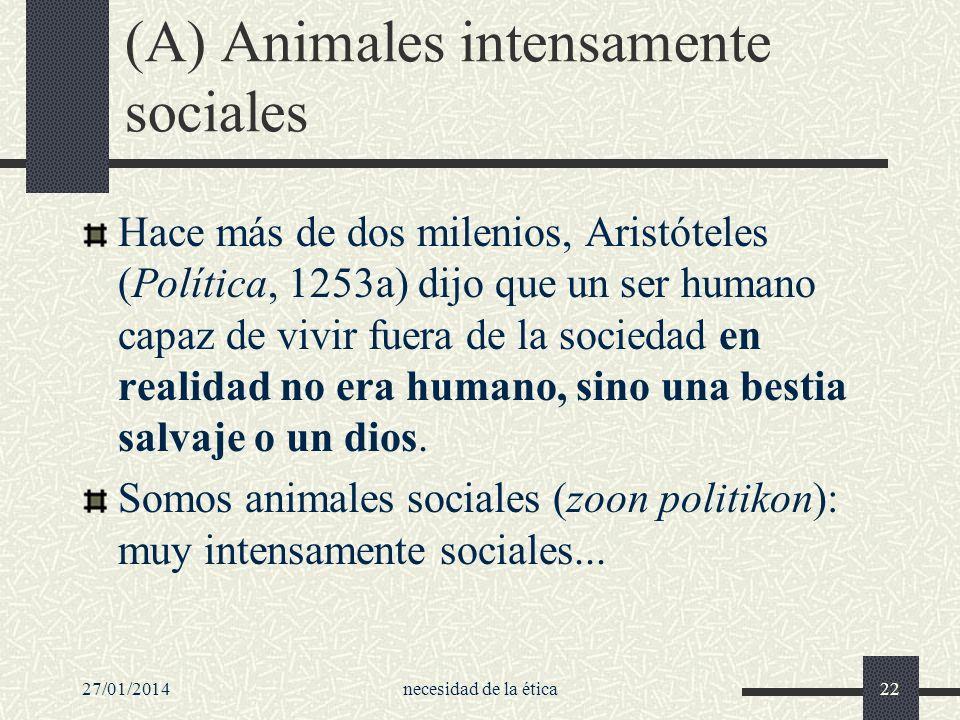 (A) Animales intensamente sociales