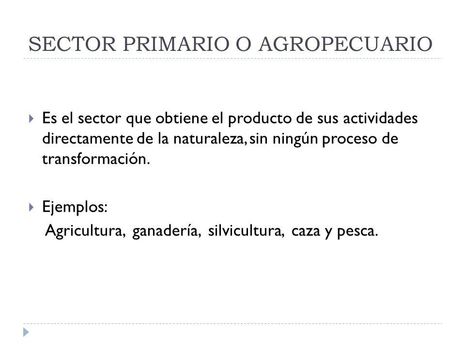 SECTOR PRIMARIO O AGROPECUARIO