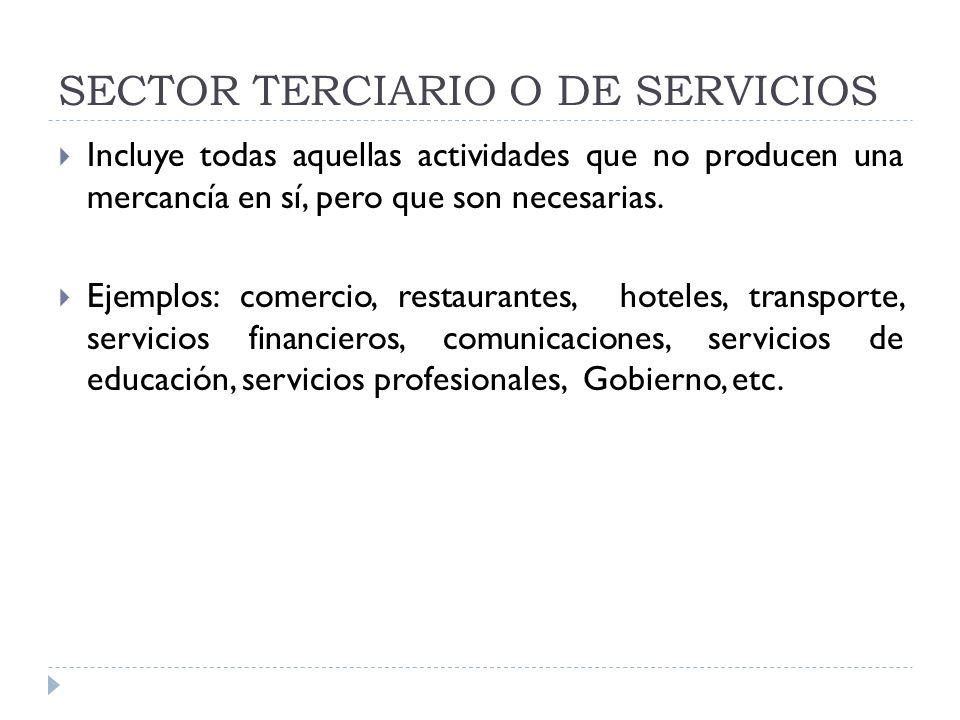SECTOR TERCIARIO O DE SERVICIOS