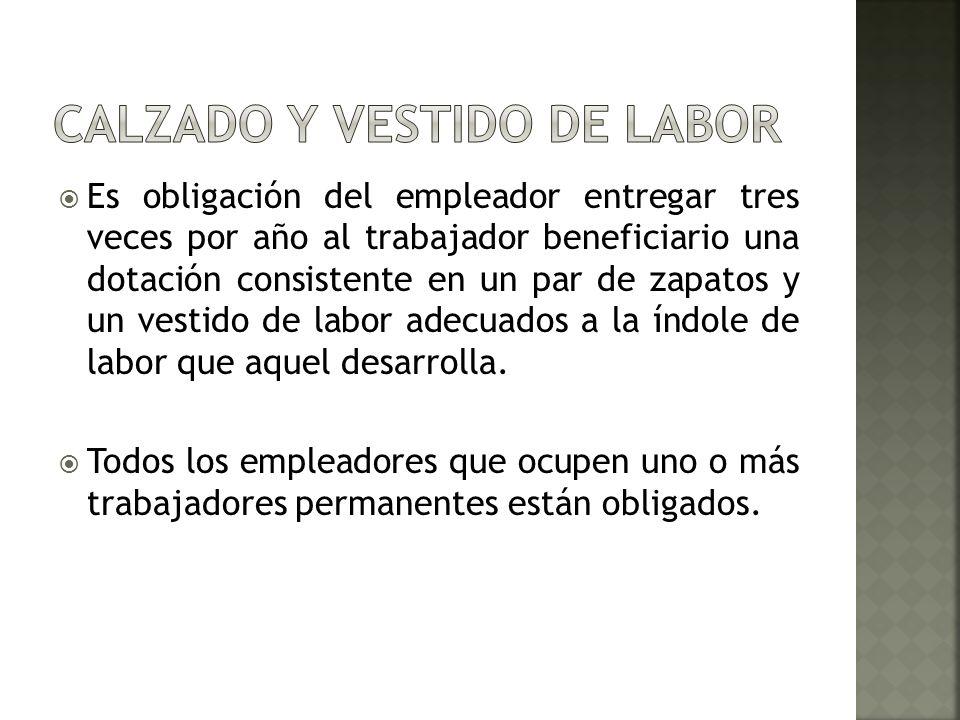 CALZADO Y VESTIDO DE LABOR