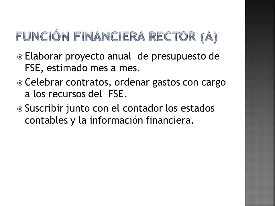 Función financiera rector (a)