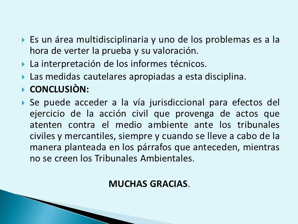 Es un área multidisciplinaria y uno de los problemas es a la hora de verter la prueba y su valoración.