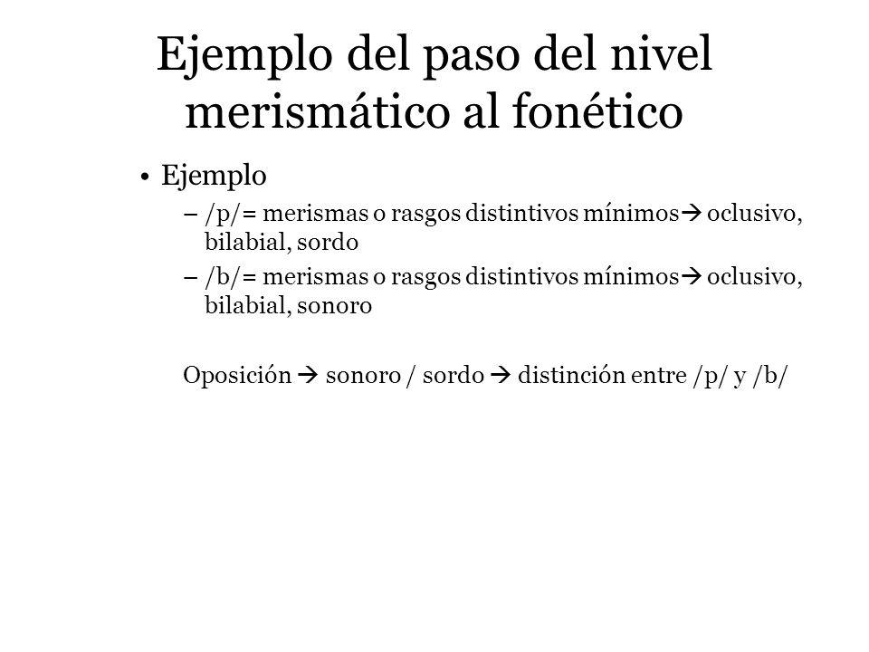 Ejemplo del paso del nivel merismático al fonético