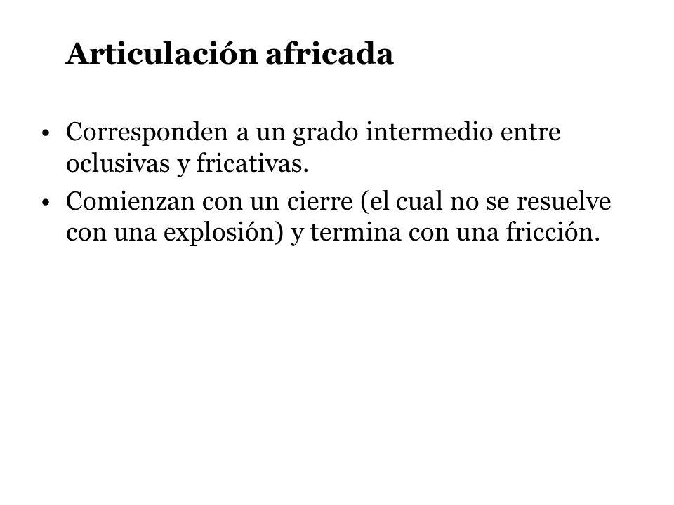 Articulación africada