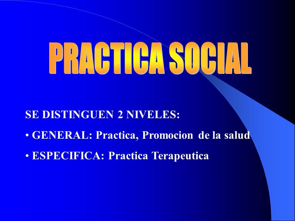 PRACTICA SOCIAL SE DISTINGUEN 2 NIVELES: