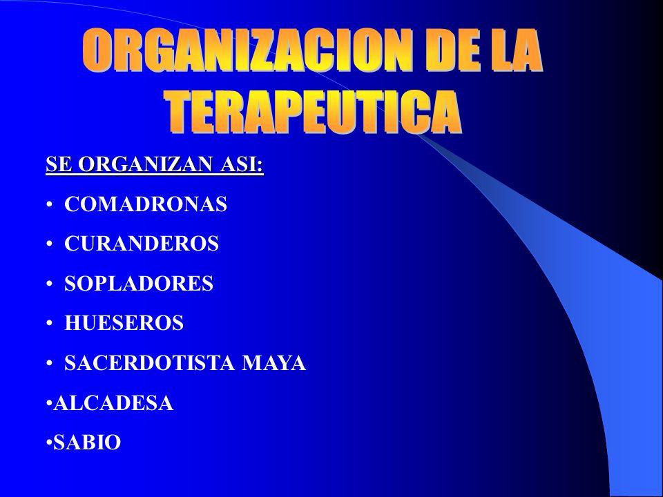 ORGANIZACION DE LA TERAPEUTICA SE ORGANIZAN ASI: COMADRONAS CURANDEROS