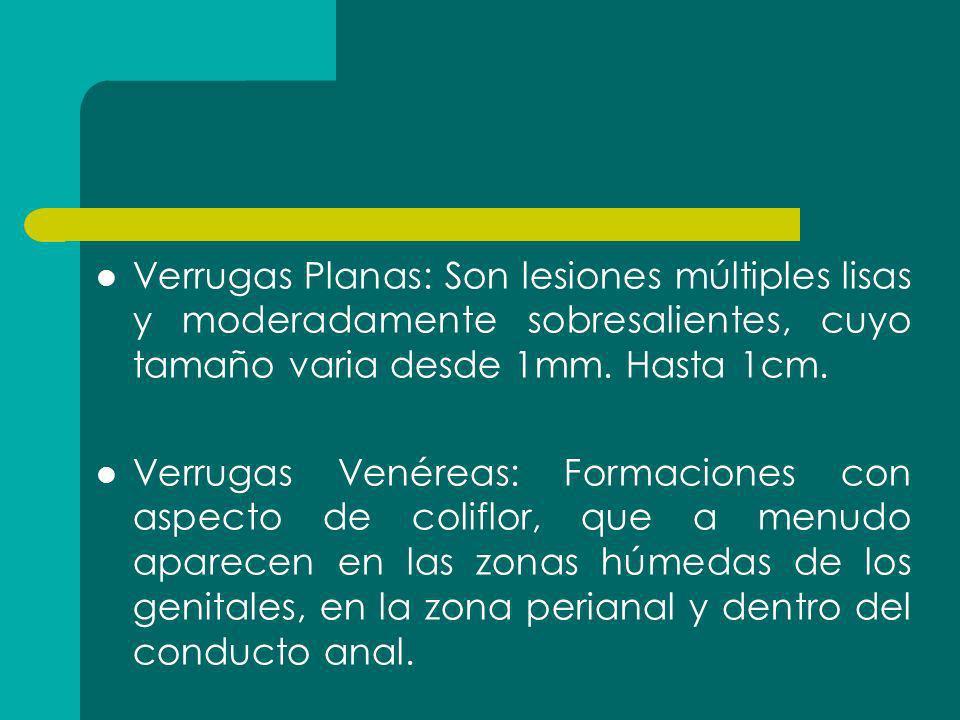 Verrugas Planas: Son lesiones múltiples lisas y moderadamente sobresalientes, cuyo tamaño varia desde 1mm. Hasta 1cm.