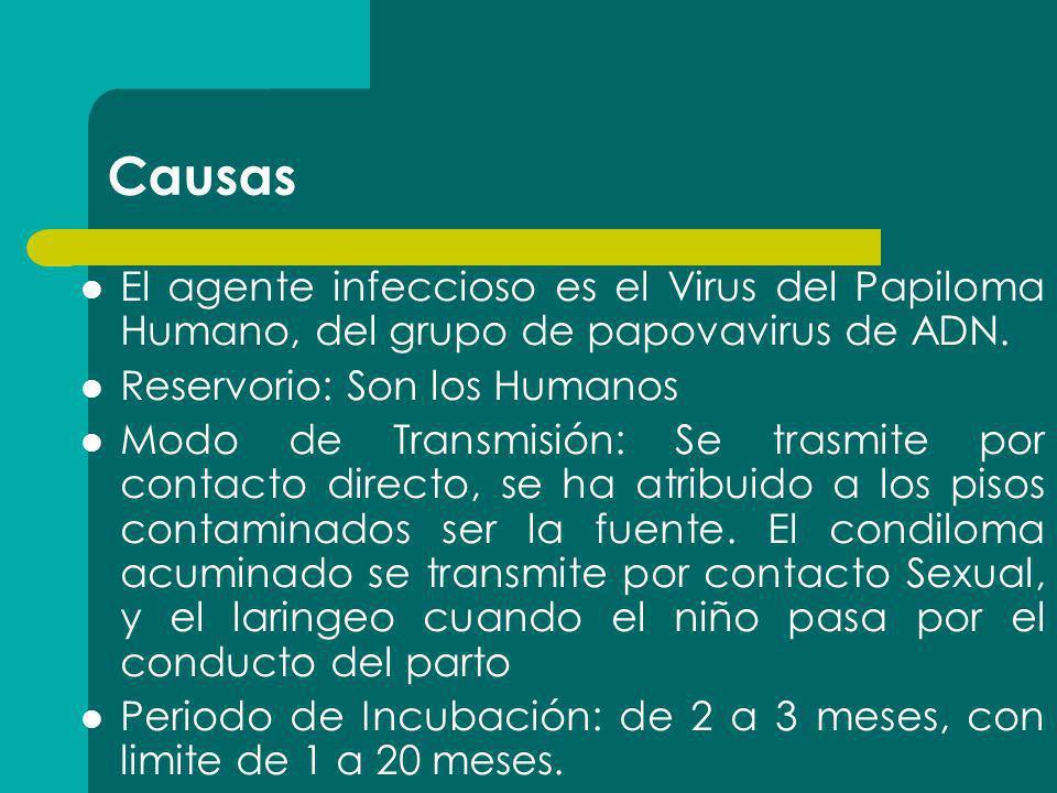 Causas El agente infeccioso es el Virus del Papiloma Humano, del grupo de papovavirus de ADN. Reservorio: Son los Humanos.
