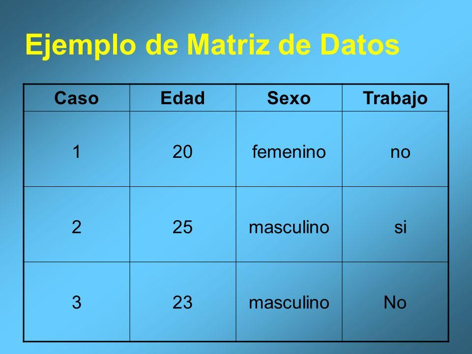 Ejemplo de Matriz de Datos