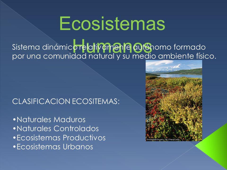 Ecosistemas HumanosSistema dinámico relativamente autónomo formado por una comunidad natural y su medio ambiente físico.