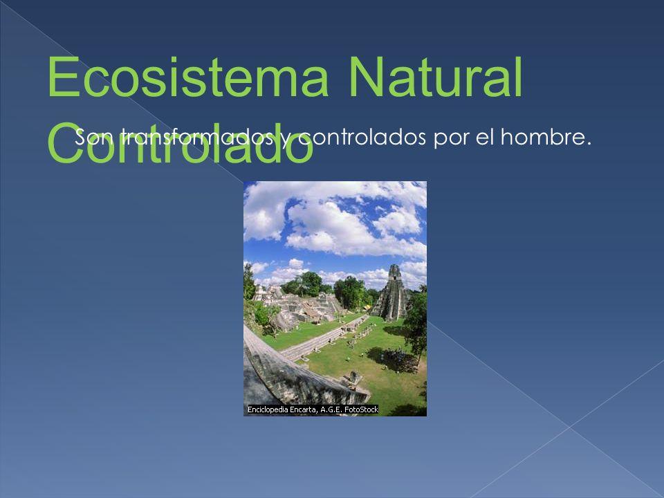 Ecosistema Natural Controlado