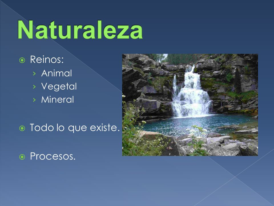 Naturaleza Reinos: Todo lo que existe. Procesos. Animal Vegetal