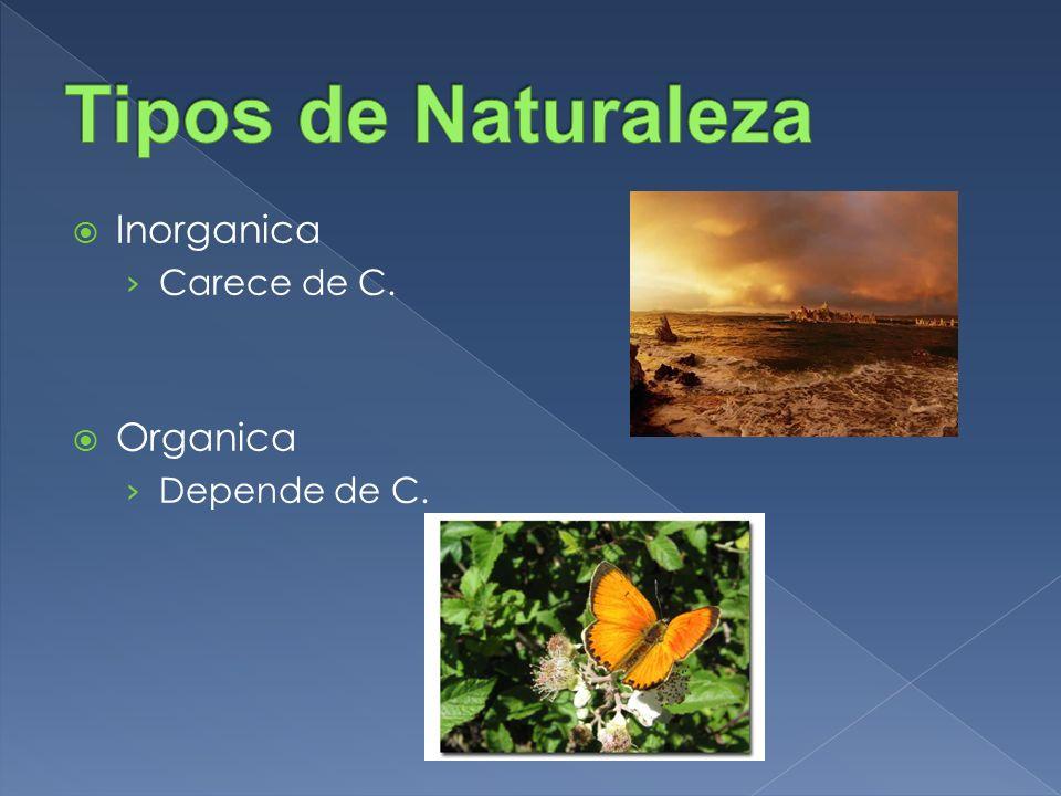 Tipos de Naturaleza Inorganica Carece de C. Organica Depende de C.