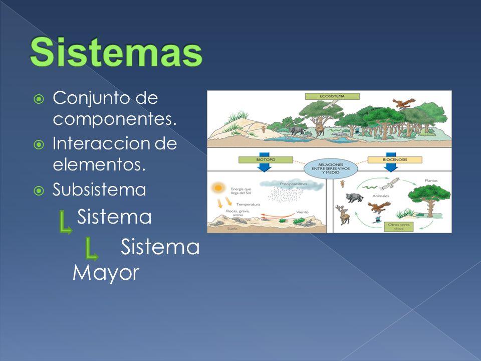 Sistemas Conjunto de componentes. Interaccion de elementos. Subsistema