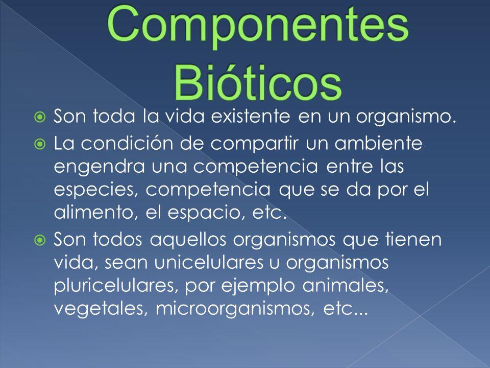 Componentes Bióticos Son toda la vida existente en un organismo.