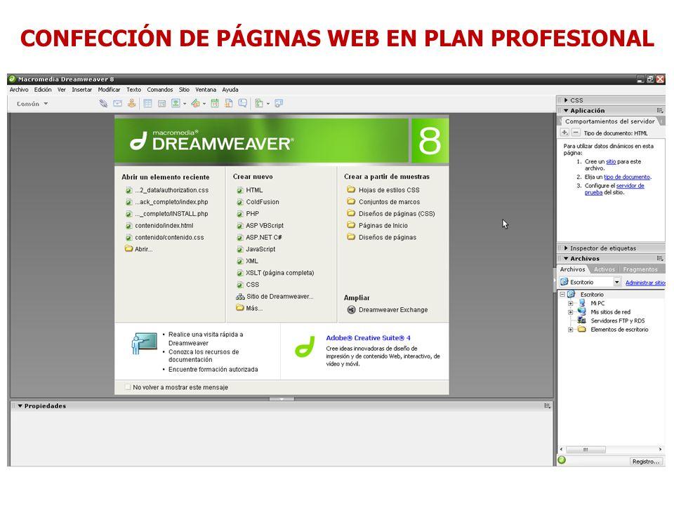 CONFECCIÓN DE PÁGINAS WEB EN PLAN PROFESIONAL