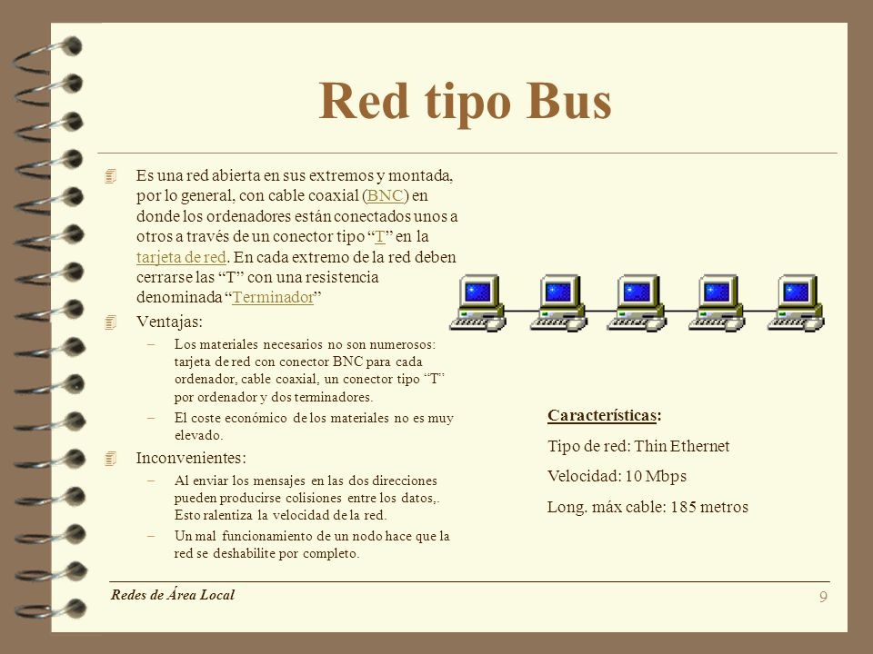 Red tipo Bus