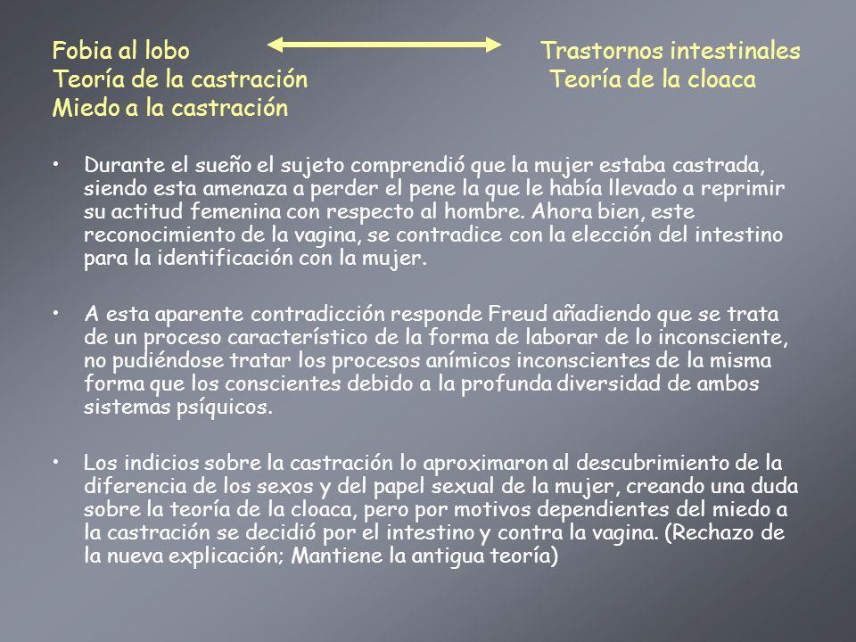 Fobia al lobo Trastornos intestinales Teoría de la castración Teoría de la cloaca Miedo a la castración