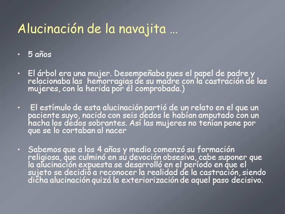 Alucinación de la navajita …