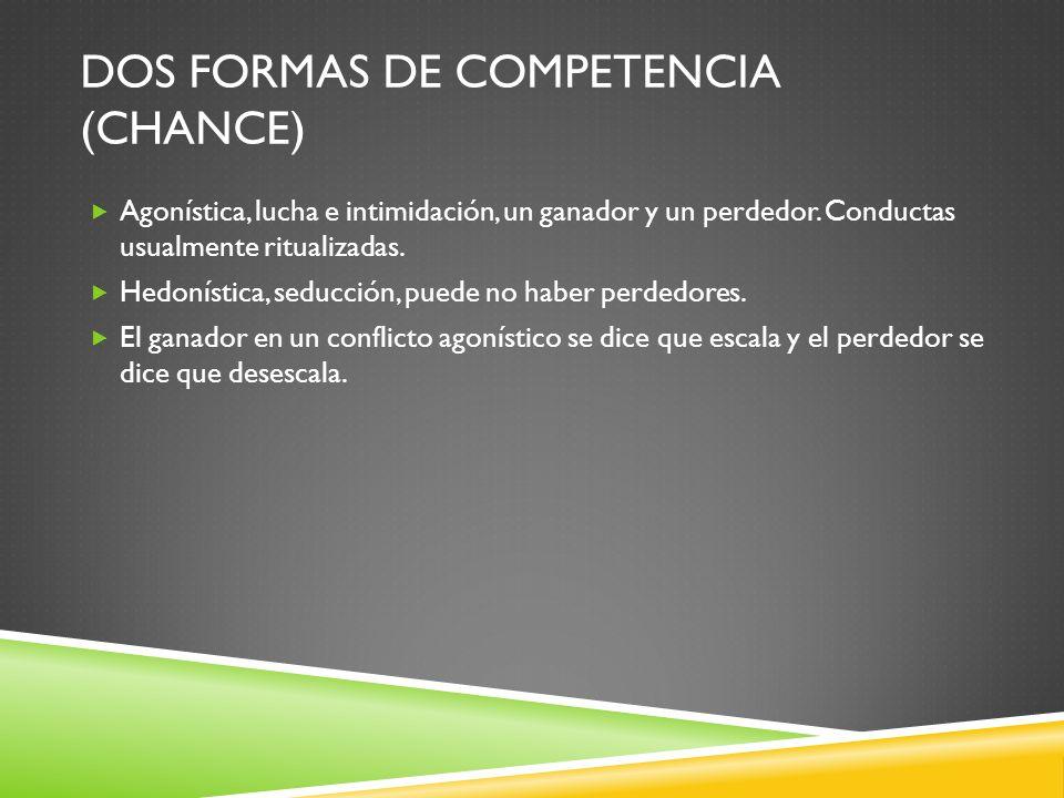 Dos formas de competencia (Chance)
