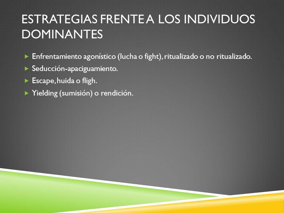 Estrategias frente a los individuos dominantes