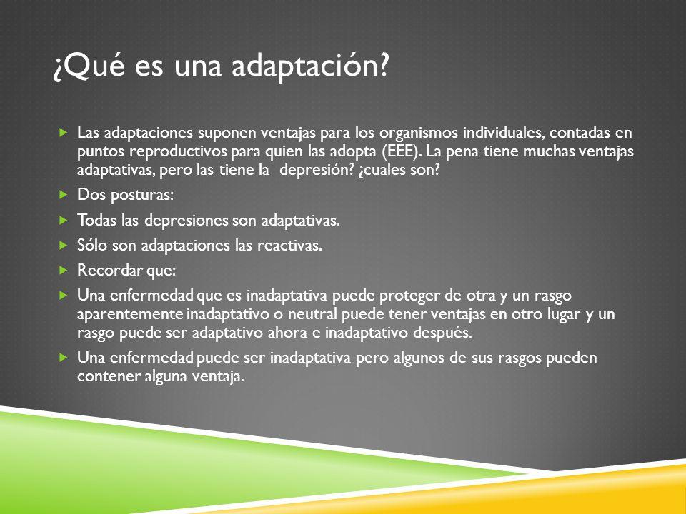 ¿Qué es una adaptación