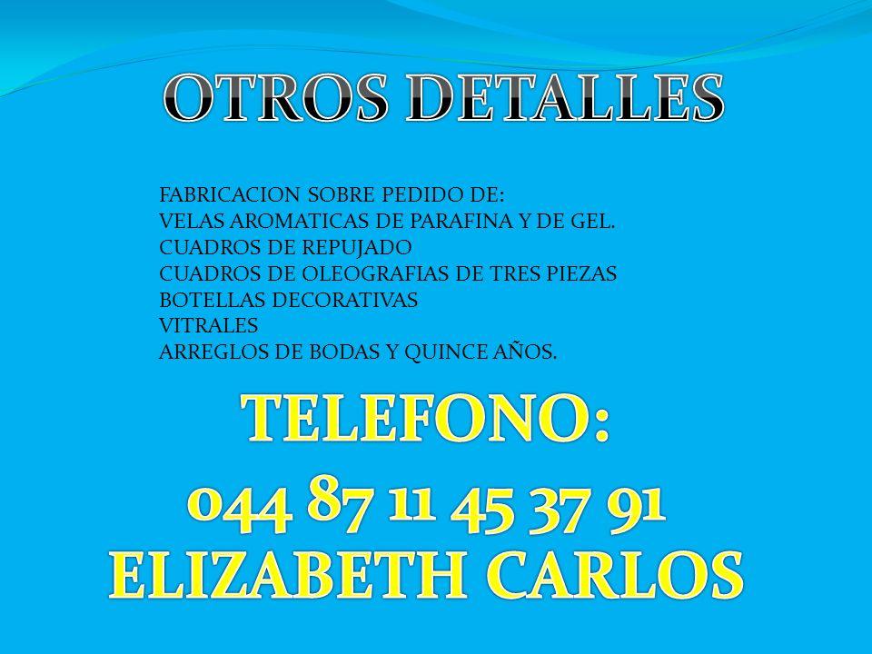 OTROS DETALLES TELEFONO: 044 87 11 45 37 91 ELIZABETH CARLOS