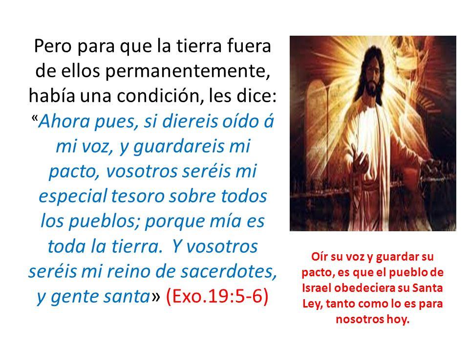 Pero para que la tierra fuera de ellos permanentemente, había una condición, les dice: «Ahora pues, si diereis oído á mi voz, y guardareis mi pacto, vosotros seréis mi especial tesoro sobre todos los pueblos; porque mía es toda la tierra. Y vosotros seréis mi reino de sacerdotes, y gente santa» (Exo.19:5-6)