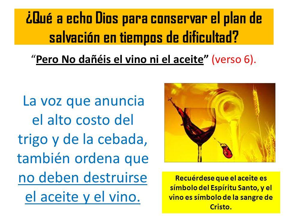 ¿Qué a echo Dios para conservar el plan de salvación en tiempos de dificultad