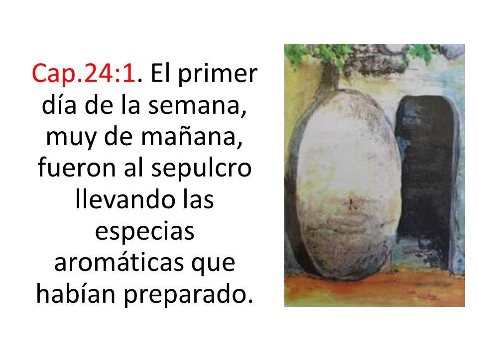 Cap.24:1.
