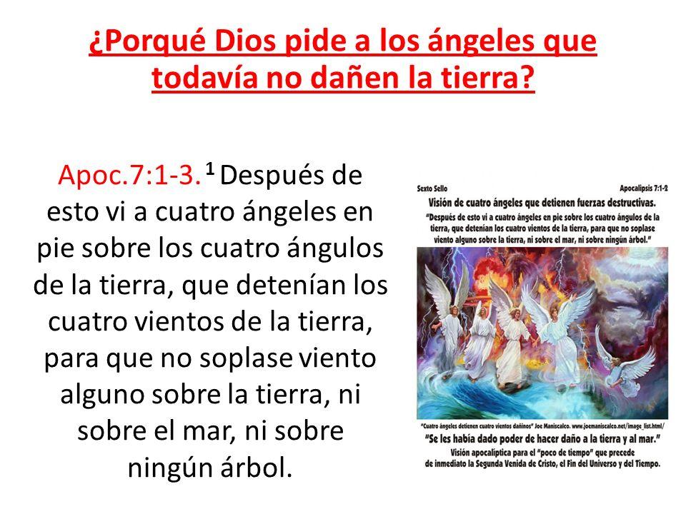 ¿Porqué Dios pide a los ángeles que todavía no dañen la tierra