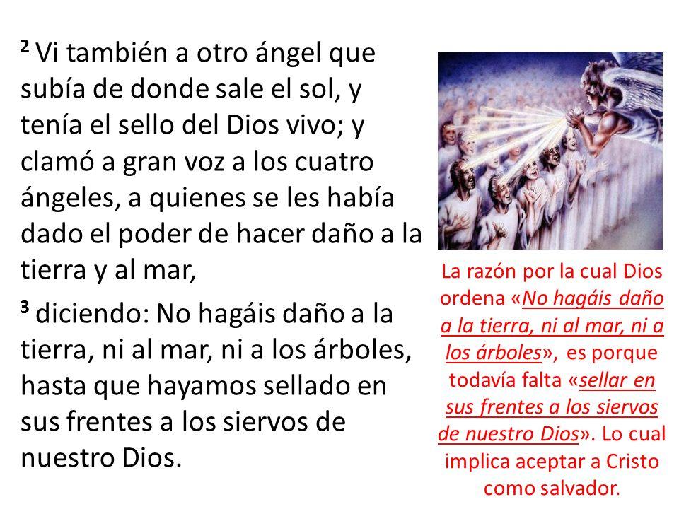 2 Vi también a otro ángel que subía de donde sale el sol, y tenía el sello del Dios vivo; y clamó a gran voz a los cuatro ángeles, a quienes se les había dado el poder de hacer daño a la tierra y al mar,