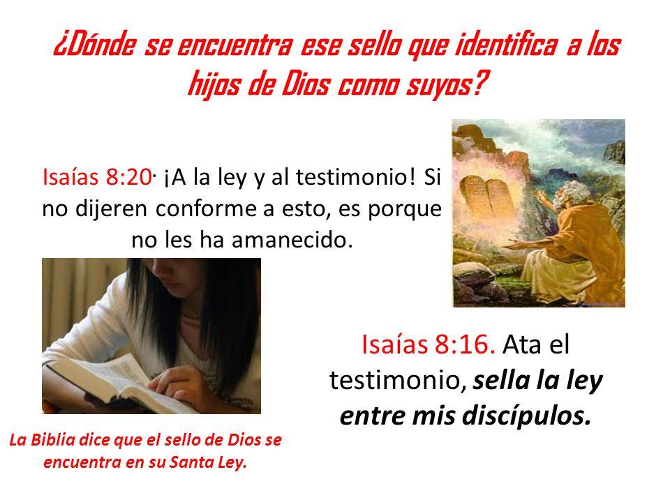 La Biblia dice que el sello de Dios se encuentra en su Santa Ley.