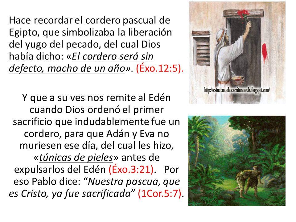 Hace recordar el cordero pascual de Egipto, que simbolizaba la liberación del yugo del pecado, del cual Dios había dicho: «El cordero será sin defecto, macho de un año». (Éxo.12:5).