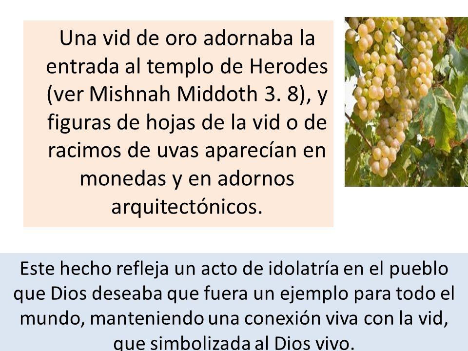 Una vid de oro adornaba la entrada al templo de Herodes (ver Mishnah Middoth 3. 8), y figuras de hojas de la vid o de racimos de uvas aparecían en monedas y en adornos arquitectónicos.
