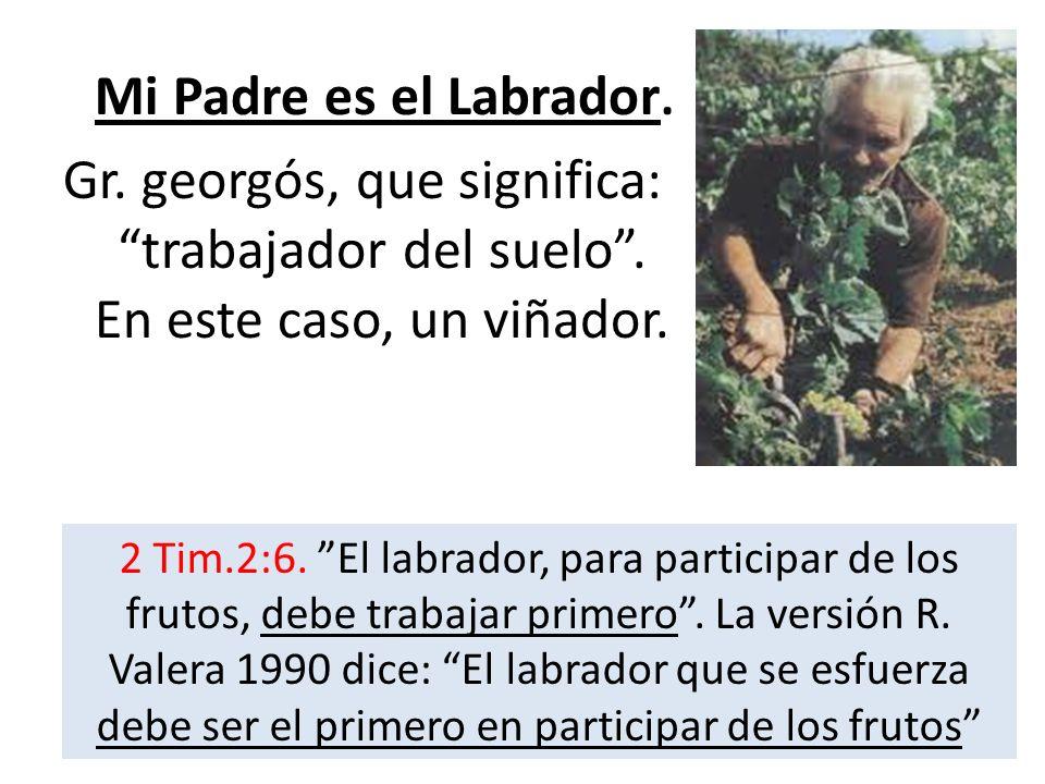 Mi Padre es el Labrador.Gr. georgós, que significa: trabajador del suelo . En este caso, un viñador.